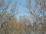 View photo From Liberty Island